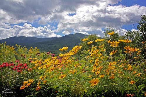 Vermont Experience Sep. 27-29