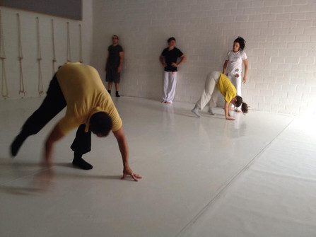 Capoeira Angola - classes started in Brussels! / cours a Bruxelles!