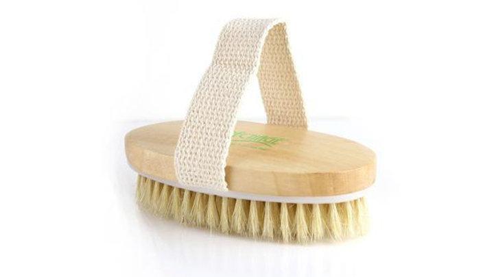 Signature Repechage® Dry Brush