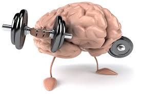 Meditation: Weight-Lifting for the Brain
