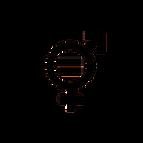 SDG-icon-DE-05.png