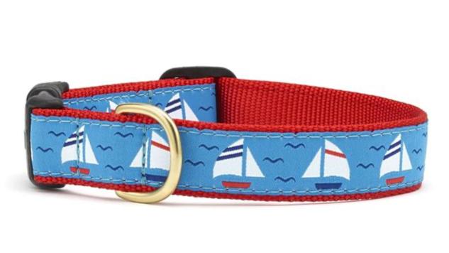 Under Sail Dog Collar
