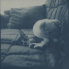 no.16 「Cyanotype」