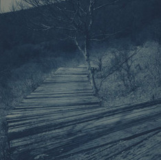 no.12 「Cyanotype」