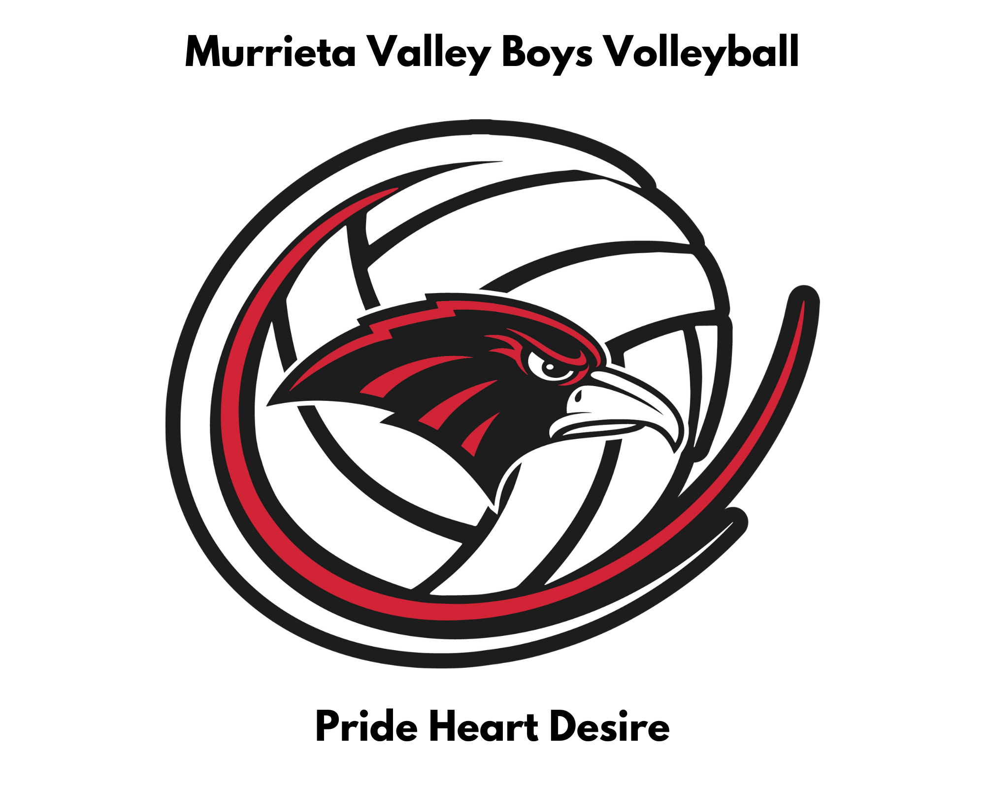 Murrieta Valley Boys Volleyball