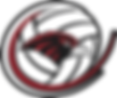 Boys Volleyball Logo.png