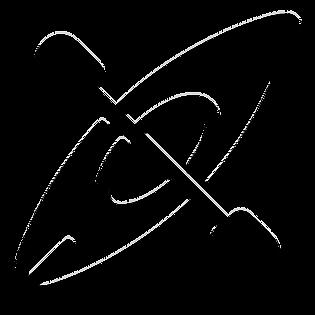 KAYAK 3.png