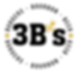 3B Logo Color.png