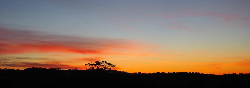 Farm-Panorama-Sunset.png