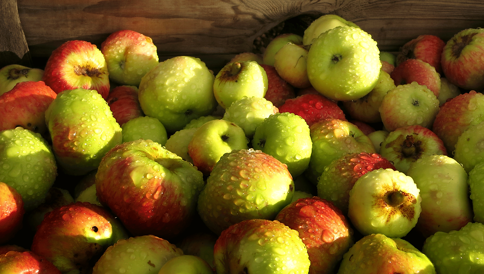 Apples-in-box.png