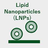 3-Lipid nanoparticles.png