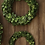 Thumbnail: boxwood wreath, 2 sizes