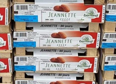 Pommes de Terre Jeannette