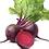 Thumbnail: Plants de betteraves rouges * 6