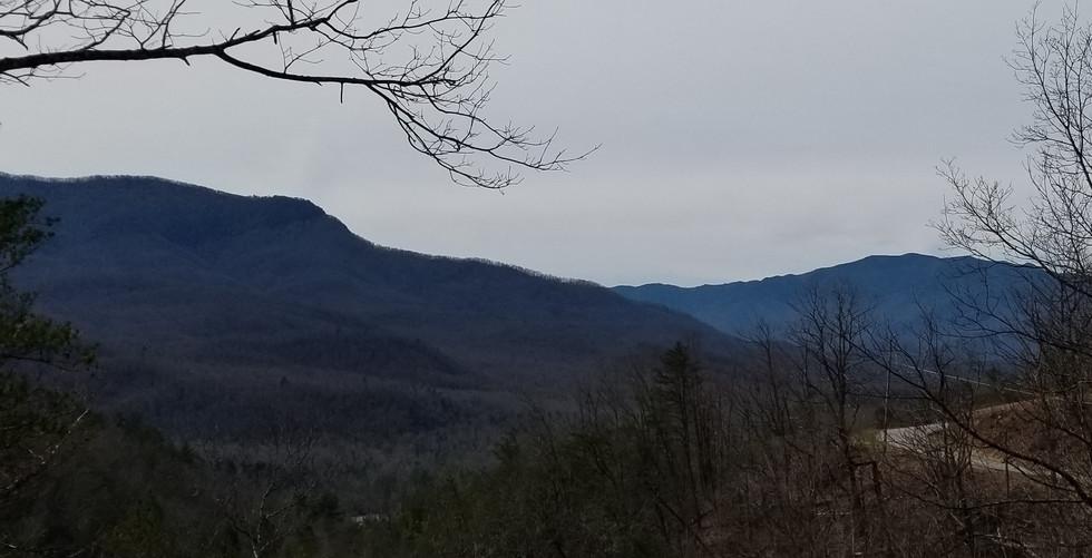 3 12 2019 view (2).jpg