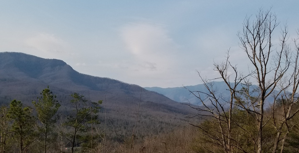3 21 2019 view (2).jpg