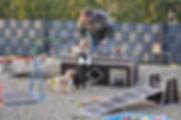 Welpenspielplatz-1.JPG