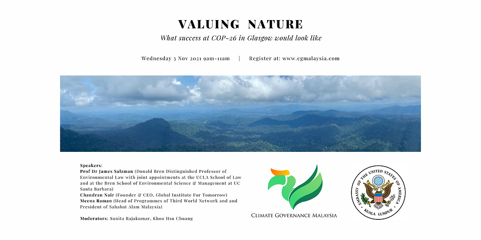 Valuing Nature: What Success at COP26 in Glasgow Would Look Like