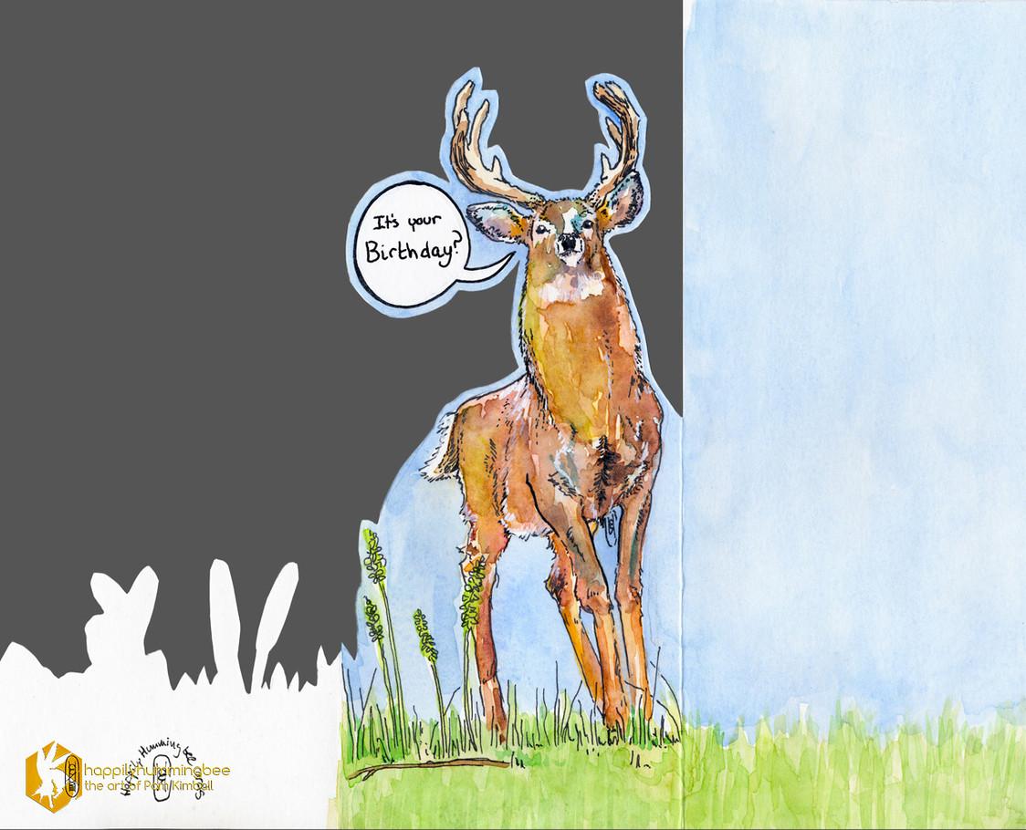 Surprised Deer - exterior