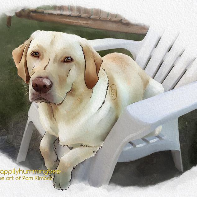 Marshmallow Pup