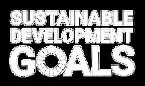 E_SDG_logo_without_UN_emblem_square_white_RGB_edited.png