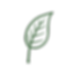 Adams-Garden-Icon-14.png