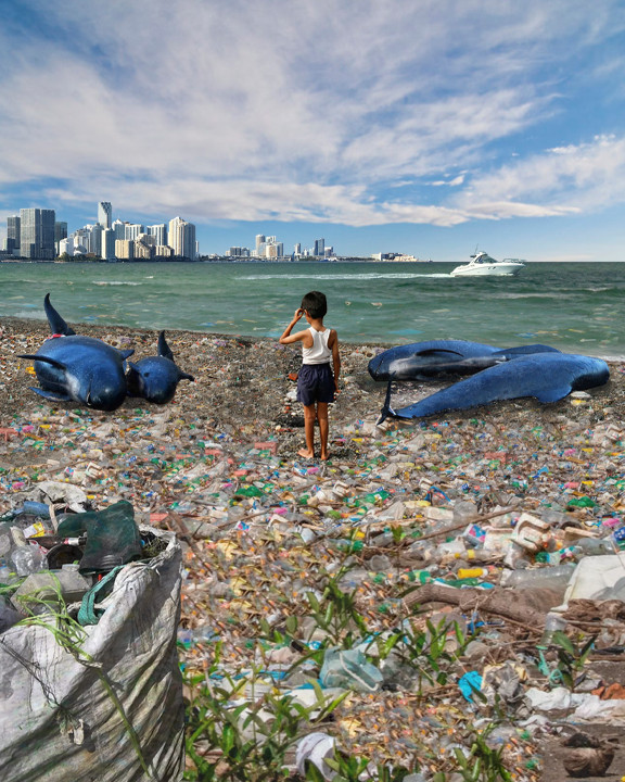 Land of Trash