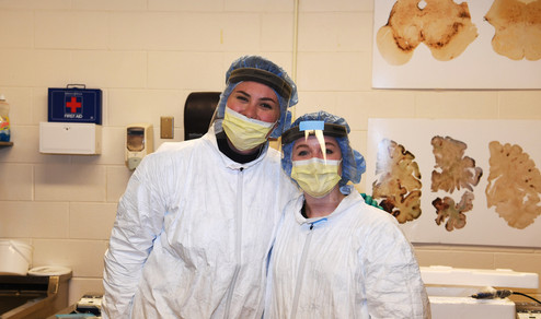 morgan and audrey processing in brain ba