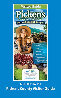 Pickens County Flip Book Icon (002).jpg