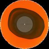 Colour in Colour vinyl_S.png