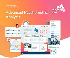Morrisby Profile.jpg