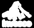 Logo_Invesco-01.png