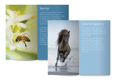 Monografia istituzionale | Corporate brochure