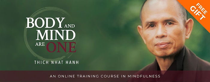 Thich Nhat Hanh Free Gift Banner.jpg