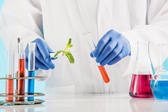 plant-sciences-in-lab.jpg