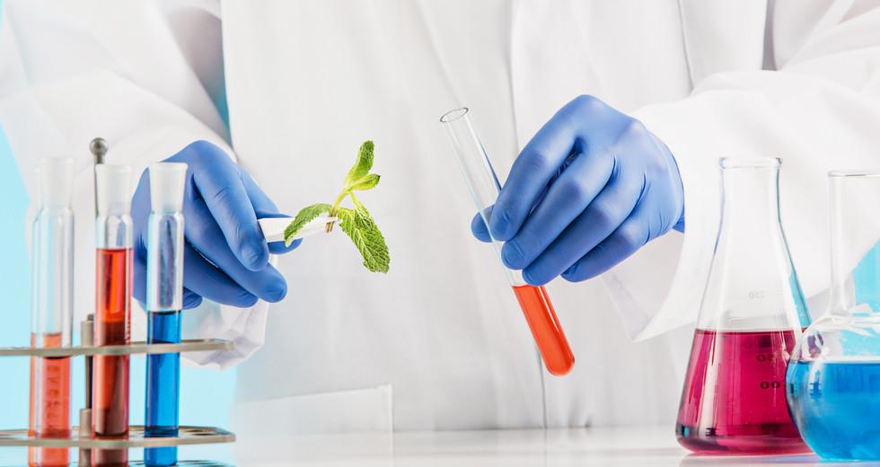 plant-sciences-in-lab.jpg