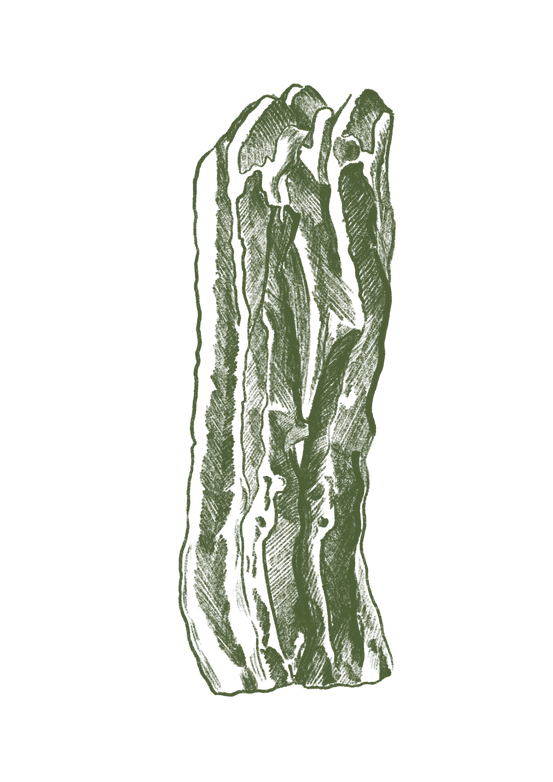 green bacon.png