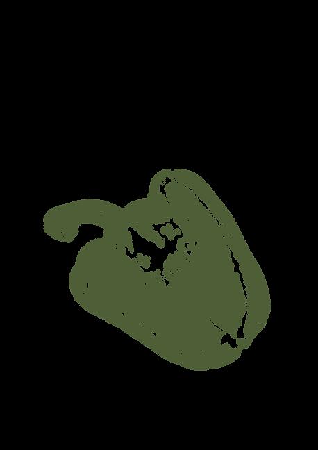 green pepper.png