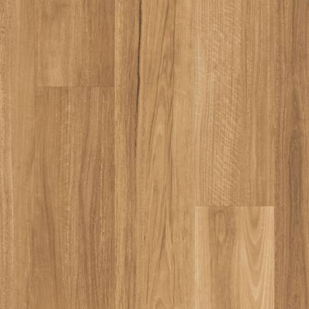 KLLL LEMON SPOTTED GUM