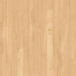 Kardean Da Vinci Canadian Maple