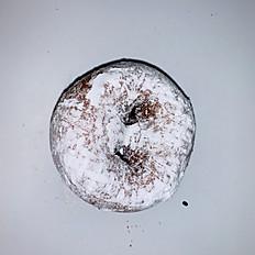 Powdered Cake Donut