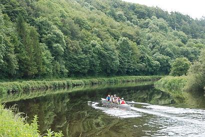 River Barrow woodlands.JPG