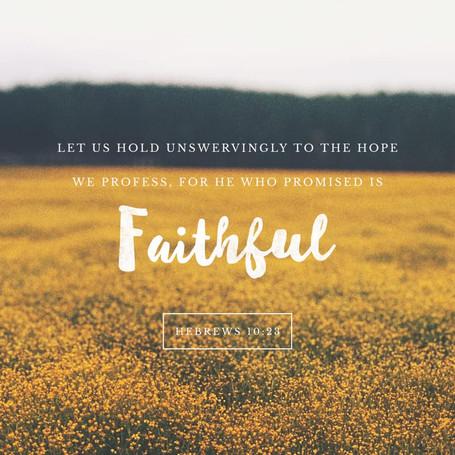 Faithful Ally