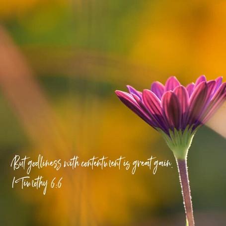 Gratitude & Contentment