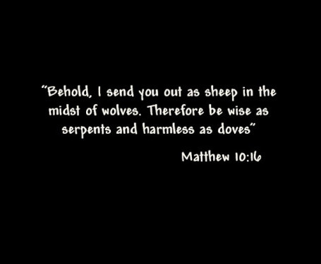 Jesus, Friend of Sheep & Wolves?