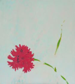 Tulip    (Cat N° 7022)
