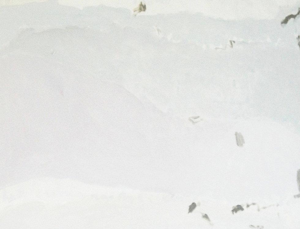White landscape  (Cat. N° 7044)