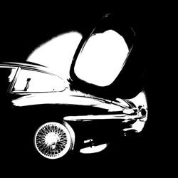 Contrast Jag    (Cat N° 7180)