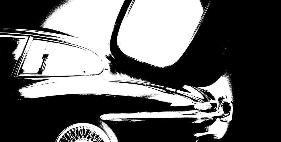 Contrast Jag  (Cat. Nr 7180)