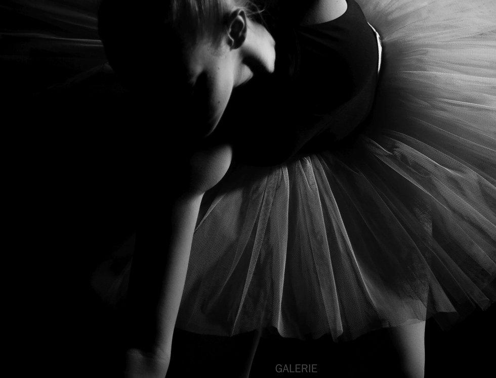 Ballerina    (Cat N° 6516)
